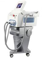 VCA Laser K9